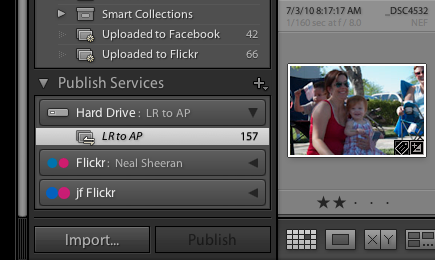 Lightroom Publish Service screen capture